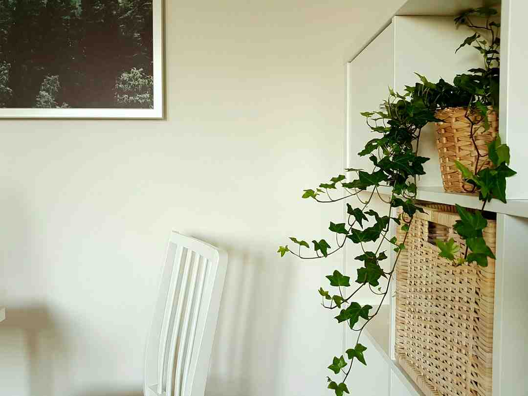 Comment disposer etageres murales