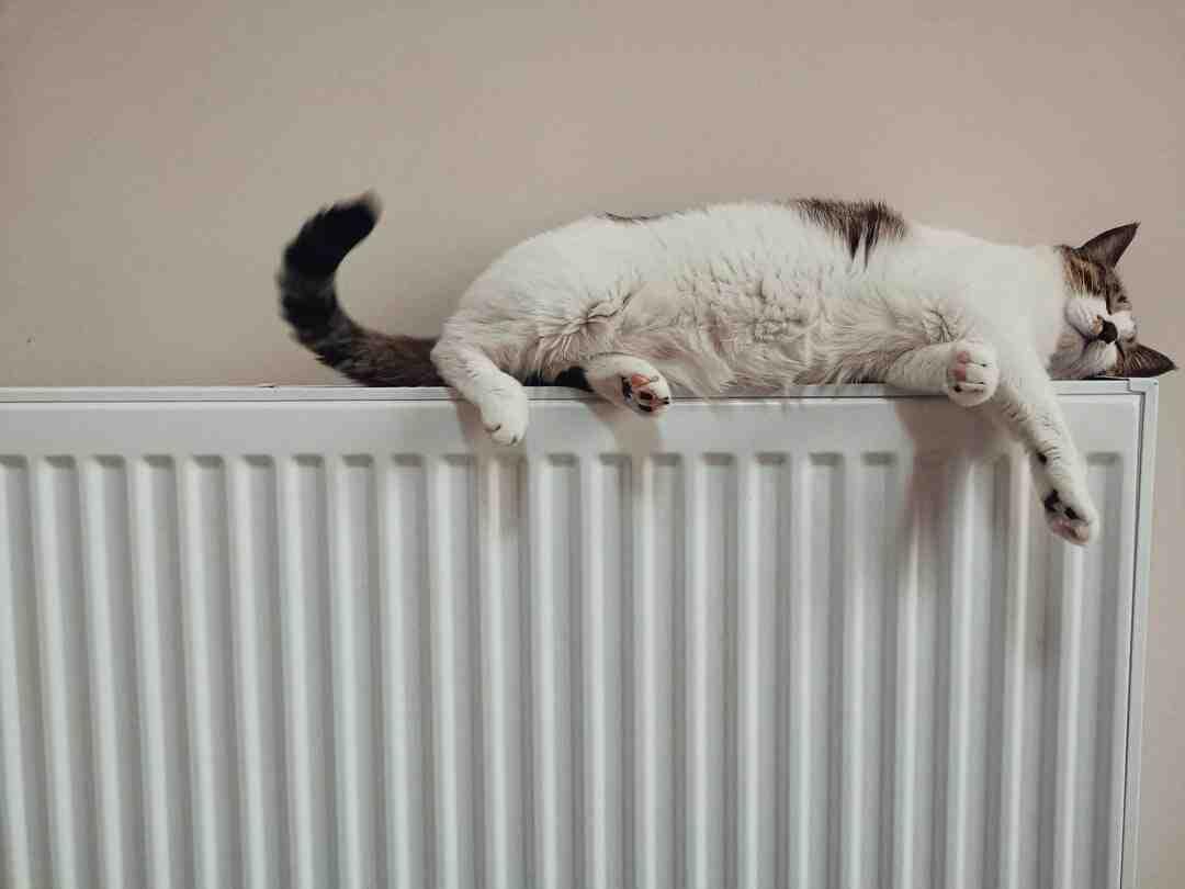 Comment nettoyer les chauffages ?
